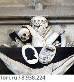 Купить «Memento mori - skull, reaper sickle», фото № 8938224, снято 18 ноября 2017 г. (c) PantherMedia / Фотобанк Лори