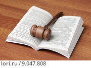 Купить «Судейский молоток лежит на открытом уголовном кодексе», фото № 9047808, снято 3 августа 2015 г. (c) Денис Ларкин / Фотобанк Лори
