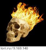 Купить «Blazing Skull», фото № 9169140, снято 22 марта 2019 г. (c) PantherMedia / Фотобанк Лори