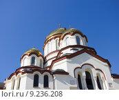 Купить «Абхазия, Новый Афон. Симоно-Кананитский монастырь», фото № 9236208, снято 7 августа 2015 г. (c) Алексей Ларионов / Фотобанк Лори