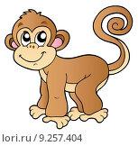 Купить «Cute small monkey», иллюстрация № 9257404 (c) PantherMedia / Фотобанк Лори