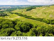 Купить «vineyards near Chateau Chalon, Département Jura, Franche-Comté, France», фото № 9273116, снято 22 июля 2019 г. (c) PantherMedia / Фотобанк Лори