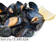 Купить «cooked mussels closeup», фото № 9345624, снято 17 февраля 2019 г. (c) PantherMedia / Фотобанк Лори