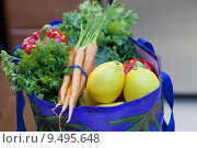 Купить «Fresh Produce in a Grocery Bag», фото № 9495648, снято 16 октября 2018 г. (c) PantherMedia / Фотобанк Лори