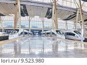 Купить «Высокоскоростные поезда на станции железных дорог Пекина», фото № 9523980, снято 23 мая 2015 г. (c) Vitas / Фотобанк Лори