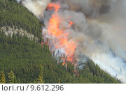 Купить «Forest Fire in the Rocky Mountains », фото № 9612296, снято 26 мая 2020 г. (c) PantherMedia / Фотобанк Лори