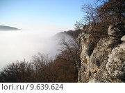 Купить «herbstnebel autumn fall valley fog», фото № 9639624, снято 22 июля 2019 г. (c) PantherMedia / Фотобанк Лори