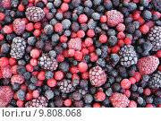 Купить «Close up of frozen mixed fruit  - berries - red currant, cranberry, raspberry, b», фото № 9808068, снято 15 августа 2018 г. (c) PantherMedia / Фотобанк Лори