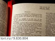 Купить «Book of Psalms», фото № 9830804, снято 26 мая 2019 г. (c) PantherMedia / Фотобанк Лори
