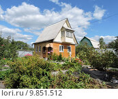 Купить «Деревянный дом на дачном участке летом. Московская область», эксклюзивное фото № 9851512, снято 15 августа 2015 г. (c) lana1501 / Фотобанк Лори