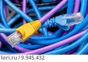 Купить «Cat 5 cables in multiple colors», фото № 9945432, снято 14 августа 2018 г. (c) PantherMedia / Фотобанк Лори