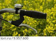 Купить «nature wheel handle bell bike», фото № 9957600, снято 21 марта 2019 г. (c) PantherMedia / Фотобанк Лори