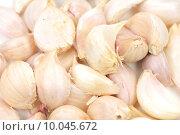 Купить «Garlic Isolated on white background », фото № 10045672, снято 21 февраля 2019 г. (c) PantherMedia / Фотобанк Лори
