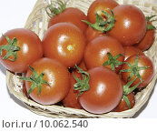 Купить «fruit garden vegetable tomatoes eco», фото № 10062540, снято 23 июля 2019 г. (c) PantherMedia / Фотобанк Лори