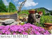 Купить «garden with beautiful flower decoratin», фото № 10101572, снято 5 апреля 2020 г. (c) PantherMedia / Фотобанк Лори