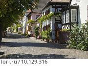 Купить «europe historical germany german tendrils», фото № 10129316, снято 16 октября 2018 г. (c) PantherMedia / Фотобанк Лори