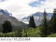Купить «Westkanada - Columbia Icefield in den Rocky Mountains», фото № 10253664, снято 17 июля 2019 г. (c) PantherMedia / Фотобанк Лори