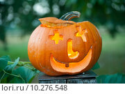 Купить «nature fruit orange halloween pumpkin», фото № 10276548, снято 20 июня 2019 г. (c) PantherMedia / Фотобанк Лори