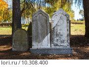 Купить «forgotten and unkempt Jewish cemetery with the strangers», фото № 10308400, снято 23 июля 2019 г. (c) PantherMedia / Фотобанк Лори