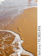 Купить «Footsteps on the beach», фото № 10383416, снято 5 апреля 2020 г. (c) PantherMedia / Фотобанк Лори