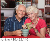 Купить «Happy Caucasian Elderly Couple», фото № 10433140, снято 4 августа 2018 г. (c) PantherMedia / Фотобанк Лори