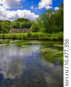 Купить «Arlington Row in Bibury with River Coln, Cotswolds, Gloucestershire, UK», фото № 10477356, снято 13 ноября 2018 г. (c) PantherMedia / Фотобанк Лори