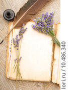 Купить «Old book with lavender flowers », фото № 10486340, снято 19 декабря 2018 г. (c) PantherMedia / Фотобанк Лори
