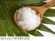 Купить «bath salt and palm leaf », фото № 10584292, снято 20 февраля 2019 г. (c) PantherMedia / Фотобанк Лори