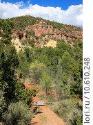 Купить «Treasures of New Mexico», фото № 10610248, снято 21 апреля 2019 г. (c) PantherMedia / Фотобанк Лори