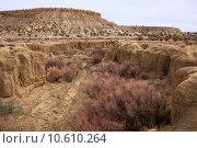Купить «Treasures of New Mexico», фото № 10610264, снято 20 июня 2019 г. (c) PantherMedia / Фотобанк Лори