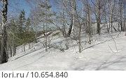 Купить «Лес зимой», видеоролик № 10654840, снято 28 июля 2015 г. (c) Алексндр Сидоренко / Фотобанк Лори