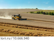 Купить «Yellow harvester combine on field harvesting gold wheat», фото № 10666940, снято 21 января 2018 г. (c) PantherMedia / Фотобанк Лори