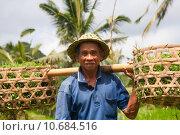 Купить «Rice farmer », фото № 10684516, снято 20 сентября 2019 г. (c) PantherMedia / Фотобанк Лори