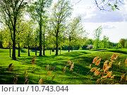 Купить «Old and beautiful bumpy golf course», фото № 10743044, снято 22 июля 2018 г. (c) PantherMedia / Фотобанк Лори