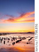 Купить «Sunset coast», фото № 10798816, снято 20 сентября 2019 г. (c) PantherMedia / Фотобанк Лори