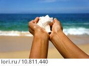 Купить «Female hands holding a seashell on a tropical beach with blue water in the background.», фото № 10811440, снято 5 апреля 2020 г. (c) PantherMedia / Фотобанк Лори