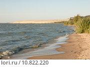 Купить «Берег Куршского залива», эксклюзивное фото № 10822220, снято 15 августа 2015 г. (c) Svet / Фотобанк Лори