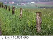 Купить «meadow willow enclosure enclosed stakes», фото № 10831660, снято 23 марта 2019 г. (c) PantherMedia / Фотобанк Лори