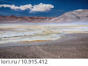 Купить «salt lake Salar de Pujsa, Chile», фото № 10915412, снято 23 января 2019 г. (c) PantherMedia / Фотобанк Лори