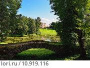 Купить «Summer landscape of the Pavlovsk garden, Russia. View to the palace.», фото № 10919116, снято 18 октября 2018 г. (c) PantherMedia / Фотобанк Лори