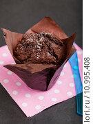 Купить «Chocolate muffin», фото № 10995408, снято 19 февраля 2018 г. (c) PantherMedia / Фотобанк Лори