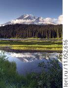 Купить «Saturated Color at Reflection Lake Mt. Rainier National Park Vertical», фото № 11052616, снято 19 декабря 2018 г. (c) PantherMedia / Фотобанк Лори
