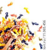 Купить «Colourful frilly Italian pasta», фото № 11065456, снято 18 января 2018 г. (c) PantherMedia / Фотобанк Лори