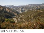 Купить «usa attraction california yosemite baum», фото № 11077796, снято 19 октября 2019 г. (c) PantherMedia / Фотобанк Лори