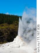 Купить «Ledy Knox geyser», фото № 11167836, снято 19 февраля 2018 г. (c) PantherMedia / Фотобанк Лори