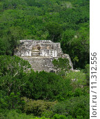 Купить «temple mexico jungle pyramid maya», фото № 11312556, снято 25 мая 2019 г. (c) PantherMedia / Фотобанк Лори