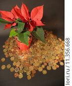 Купить «christmas money xmas coins advent», фото № 11356668, снято 22 июля 2019 г. (c) PantherMedia / Фотобанк Лори