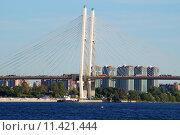 Купить «Вантовый мост», фото № 11421444, снято 21 июля 2015 г. (c) Константин Кург / Фотобанк Лори