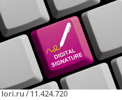 Купить «sign digital online identification signature», фото № 11424720, снято 9 мая 2018 г. (c) PantherMedia / Фотобанк Лори