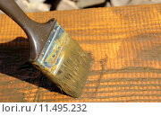 Купить «antifouling holz streichen holzgel holzschutzfarbe», фото № 11495232, снято 23 мая 2019 г. (c) PantherMedia / Фотобанк Лори